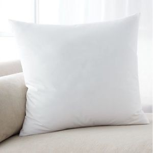 Crate and Barrel brand new Down Alternative pillow